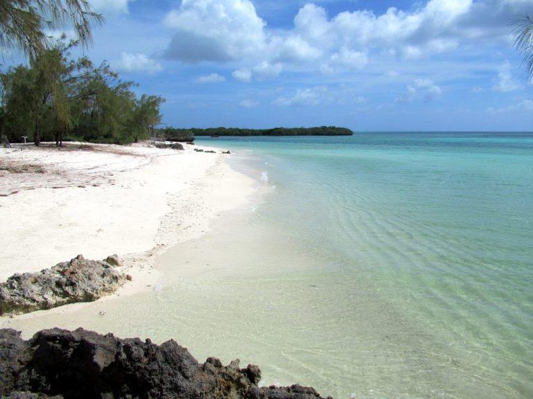 Aldabra: um ecossistema isolado e protegido no Oceano Índico