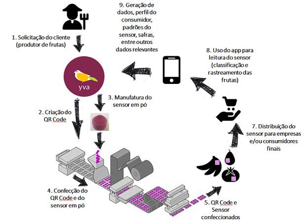 Nanossensor de baixo custo rastreia frutas e monitora a sua qualidade
