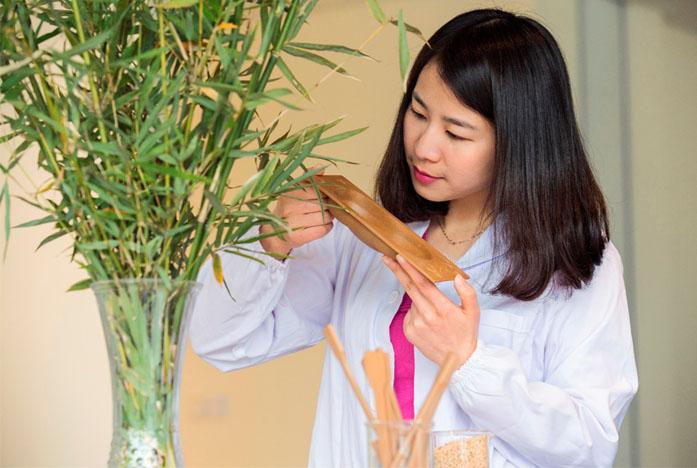 Ford pesquisa uso do bambu na produção de componentes para automóveis
