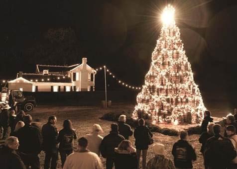 Jack Daniel's Barrel Tree (Árvore de Barris da Jack Daniel's)